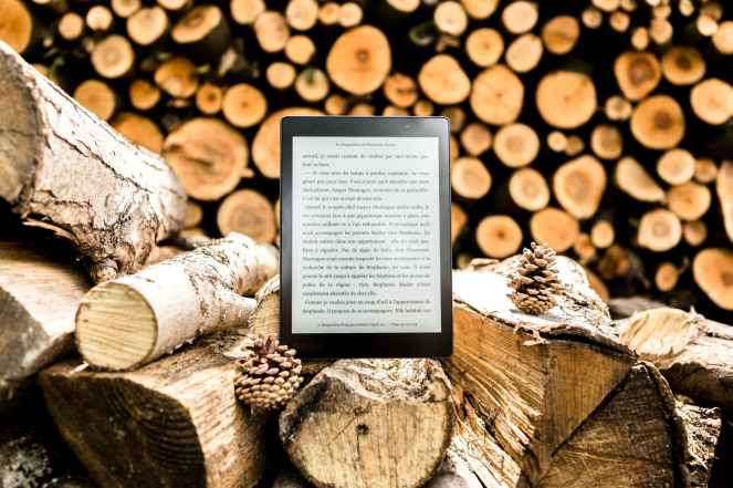 black e book reader on brown tree logs