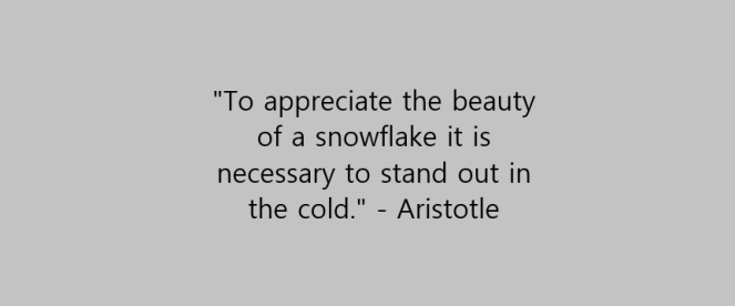 Winter quote 3