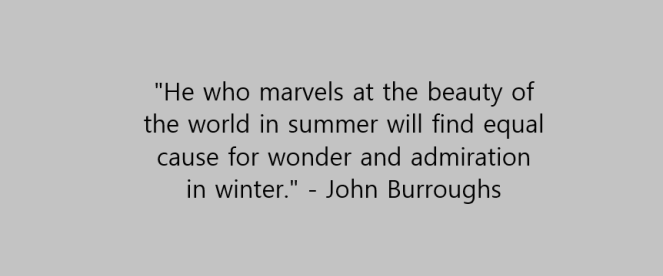 Winter quote 5